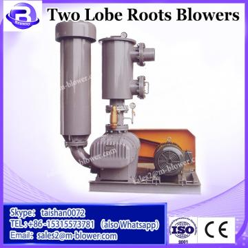 Large capacity two lobe roots blower for cement industry