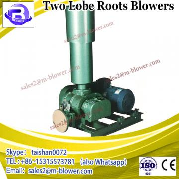 three lobes/two lobes roots blower