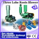 Customerized roots blower for horizontal lime klin