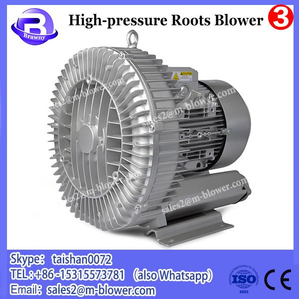 Cast iron vibration absorption strong mobility Rotary roots blower #1 image