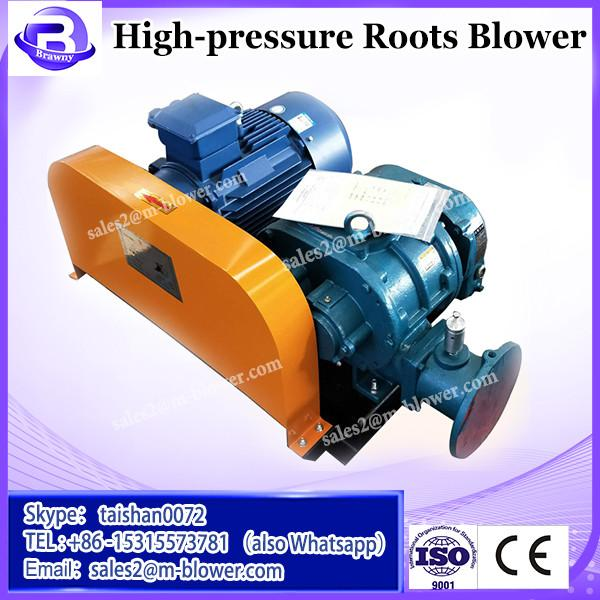 Cast iron vibration absorption strong mobility Rotary roots blower #2 image